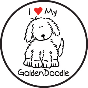 Goldendoodle Coloring Page