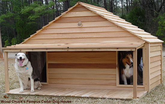 Big And Small Dog House Duplex