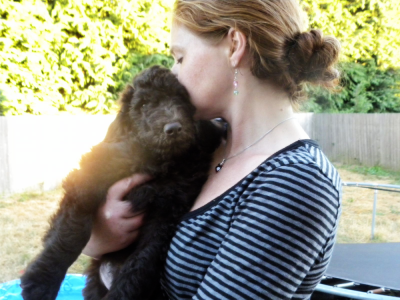 Me and one of our F1B Labradoodle Males ... these puppies are such cuddly Teddy Bears!!