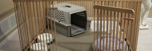 Dog Crates and Puppy X-Pen Setups