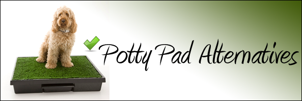 Potty Pad Alternatives