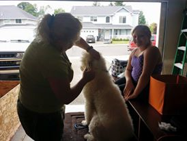 Pele getting groomed in our garage by our groomer and my daughter - Pele's best friend