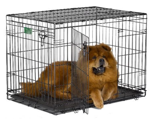 36 inch Midwest dog crate
