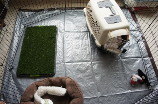 PUPPY CRATE AND X-PEN SETUP FOR FAMILIES WHO WORK
